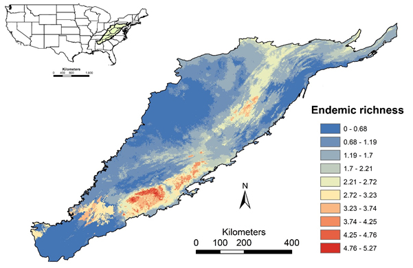 Environmental niche model prediction on where climatic conditions are currently suitable for forest vertebrates in the central and southern Appalachian Mountains. The color scaling shows endemic-weighted richness, a measure that attributes particular importance to species that are geographically rare.
